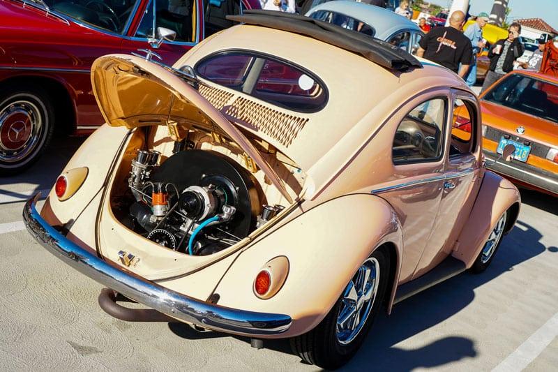 oval window bug